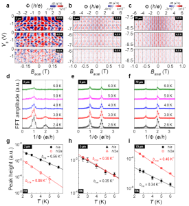 Adjustable quantum interference oscillations in Sb doped Bi2Se3 topological insulator nanoribbons 이미지