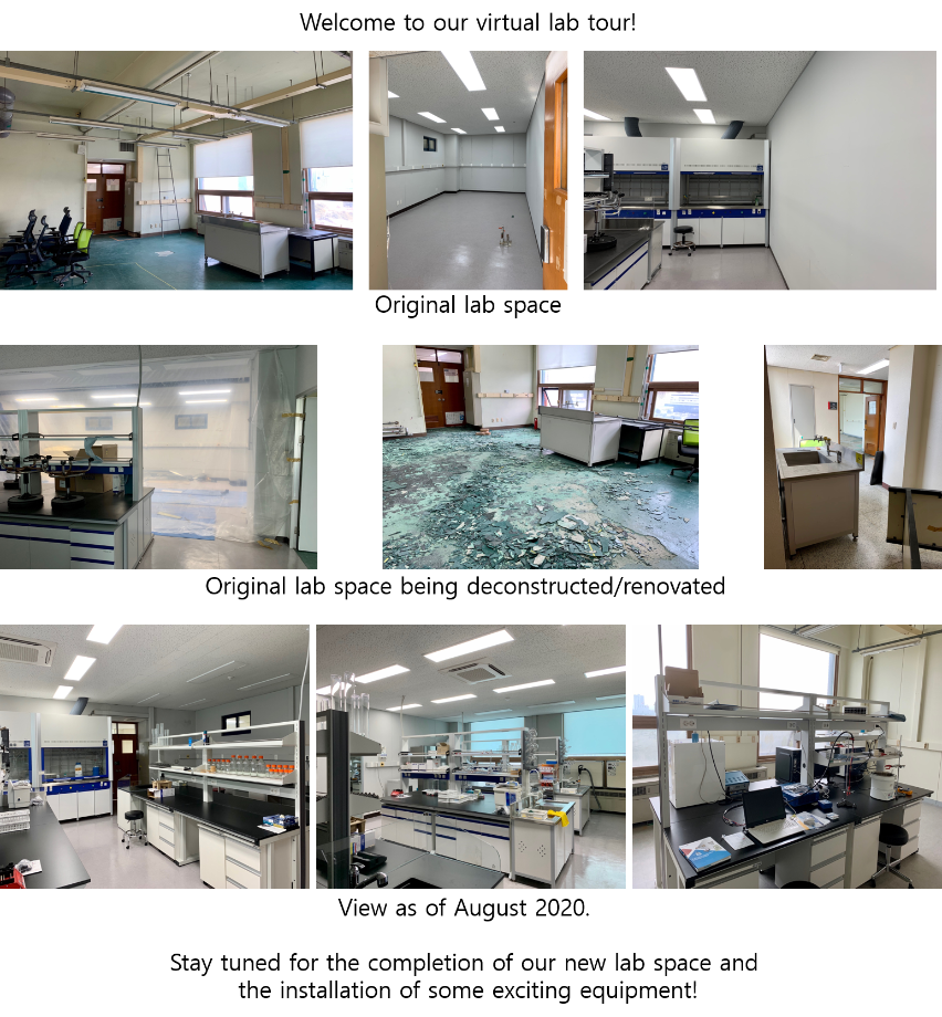 the progress of our lab renovations 이미지
