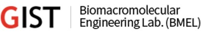 BioMacromolecular Engineering Laboratory (BMEL)